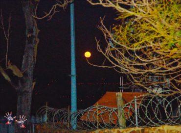 Moon walk in Johannesburg