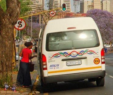 Jacaranda Season, Pretoria